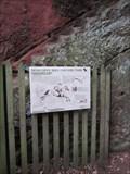Image for Kynastons Cave, Cliffs, Nesscliffe, Shrewsbury, Shropshire, England, UK