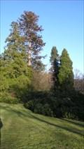 Image for Lancrigg Sequoia, Grasmere