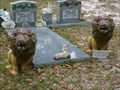 Image for Anderson Cemetery Lions - Jacksonville, FL