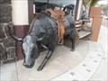 Image for Bull's Bulls  -  San Diego, CA
