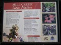 Image for Mill Creek Native Plants - Salem, Oregon