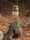 Image for Wood Face with cap in the Palatinate Forest - RLP / Germany