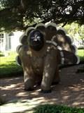 Image for Darwin the Gorilla - Waco, TX