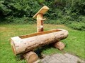 Image for Tree Trunk Fountain - Wassertretanlage - Münstertal, Germany, BW