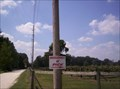 Image for U-Pick Muscadine - Williston, Florida