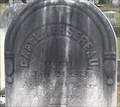 Image for 100 - Lawrence Mersereau - Riverside Cemetery, Endicott, NY