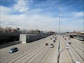 Image for T-REX - Denver, Colorado