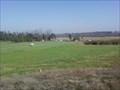Image for Prado Recreation Dog Park and Training Facility