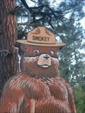 Image for Smokey Bear - SR 260, Pinetop-Lakeside, Arizona