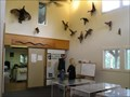 Image for Wells Mills Park Nature Center - Waretown, NJ