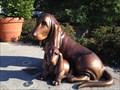 Image for Bleudog and Pup - Woodinville, WA, U.S.A.