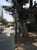 Image for Peralta Adobe - San Jose, CA