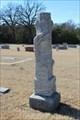 Image for William Hamilton Minton - Mount Carmel Cemetery - Wolfe City, TX
