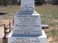 Image for William P. Tynan - Tarago, NSW