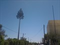 Image for Pine Cell Tower - Vilamoura, Portugal