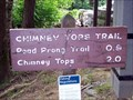 Image for Chimney Tops Trail - Great Smoky Mountains National Park, TN