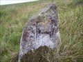 Image for H Stone, Willsworthy, Dartmoor