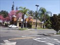 Image for Taco Bell - Lakewood Blvd - Paramount, CA