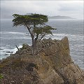 Image for Lone Cypress and Asteroid 8656 Cupressus - Pebble Beach, CA