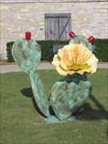 Image for Prickly Pear Cactus- Throckmorton, TX