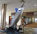 Image for Pacific Blue Marlin - World Record - Kailua-Kona, Hawaii Island, HI