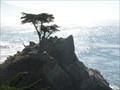 Image for Lone Cypress  -  Pebble Beach, CA