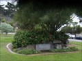Image for Presidio Park  -  San Diego, California