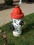 Image for Dalmatian Hydrant - Kirkwood, Missouri