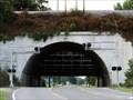 Image for CN - Flood Gate Tunnel Bridge - Cairo, IL