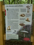 Image for Info Board 'Mushrooms' - Naturlehrpfad Ergenzingen, Germany, BW