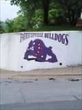 Image for Fayetteville Bulldogs Mural - Fayetteville AR