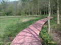 Image for Snibston Country Park, Nature Reserve Boardwalk - Snibston, Leicestershire