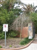 Image for Dean Tree - Florida Botanical Gardens - Largo, FL