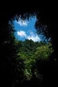 Image for Millennium Cave