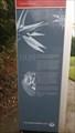 Image for Palm House - Botanic Gardens, Queens Quarter - Belfast