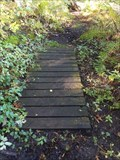 Image for Deep Lake Trail Footbridge 3 - Middleville, Michigan