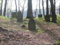 Image for Historischer Jüdischer Waldfriedhof - Rheineck - RLP - Germany