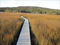 Image for Tautuku Estuary Boardwalk - Tautuku, New Zealand