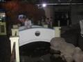 Image for Aquarium bridge - Guaruja, Brazil