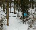 Image for Bruce Trail - Macdui Access Trail - Stoney Creek Ontario