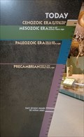 Image for Hall of Ancient Life Timelines - Precambrian to Today - Sam Noble Museum, Norman, OK
