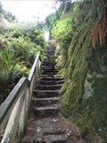 Image for Ceremonial Rock Stairs - Patrick's Point State Park - California