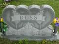 Image for 103 - Asa R. Doss - DeWitt Evergreen Cemetery - DeWitt, Mo.