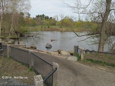 Fresh Pond Dog Park Cambridge