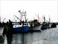 Image for Port of Galilee - Narragansett, RI