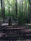 Image for Farview Nature Park Trail - Holland, Michigan