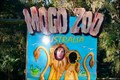 Image for Mogo Zoo, Mogo, NSW, Australia