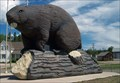 Image for LARGEST -- Beaver in the world