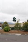 Image for 85/280  Weirdo Tree
