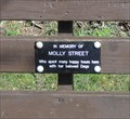 Image for Molly Street - Nantwich, UK